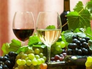 Moje życie to wino